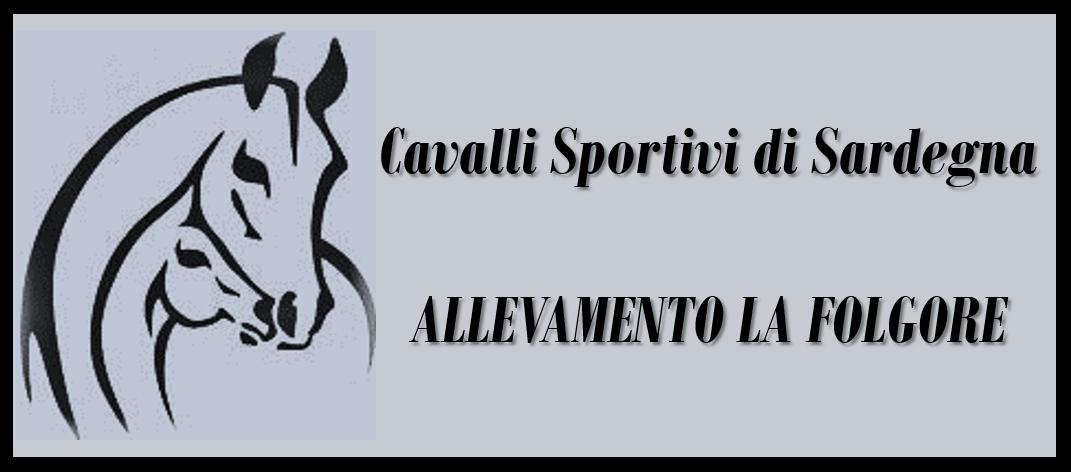 Cavalli Sportivi di Sardegna